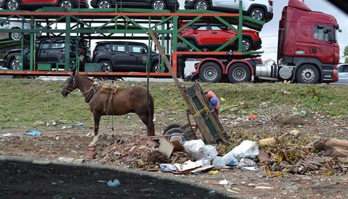 O valor da multa para os infratores poderá chegar a R$ 160 Foto: Jorge Magalhães