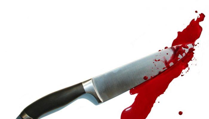 """Jogo virtual """"Baleia Azul"""" pode levar jovens a mutilações corporais e até ao suicídio (Imagem: Reprodução)"""